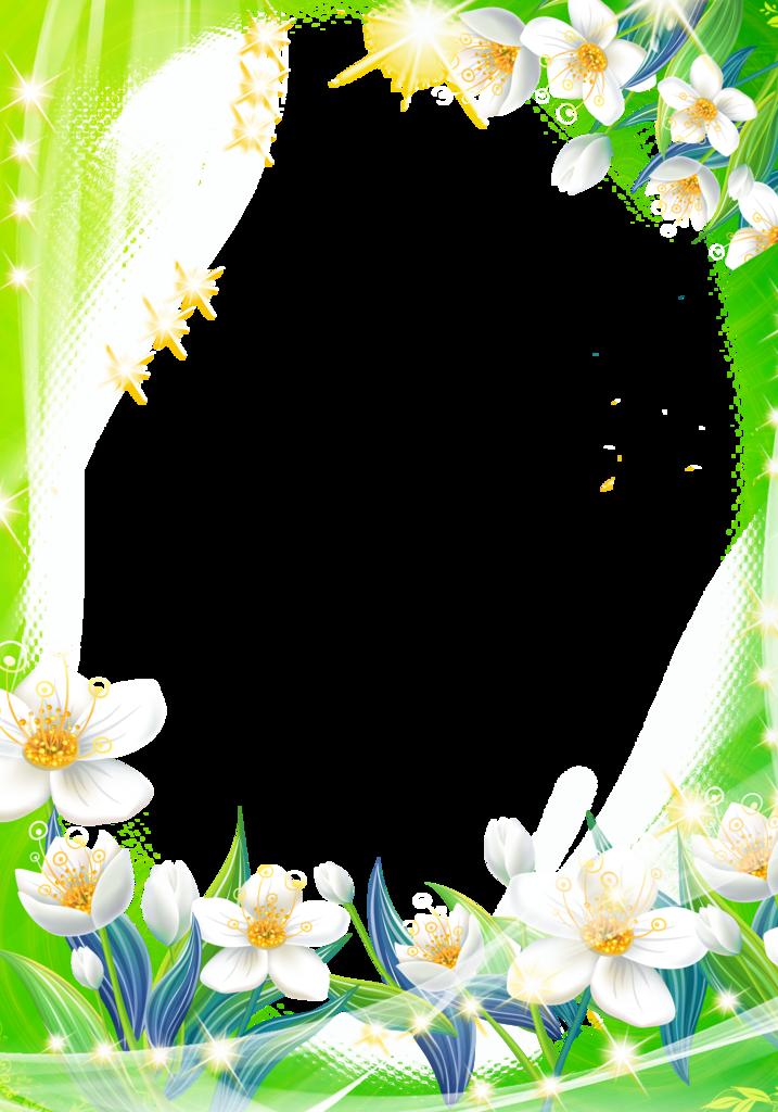 Цветы пионы пнг 3